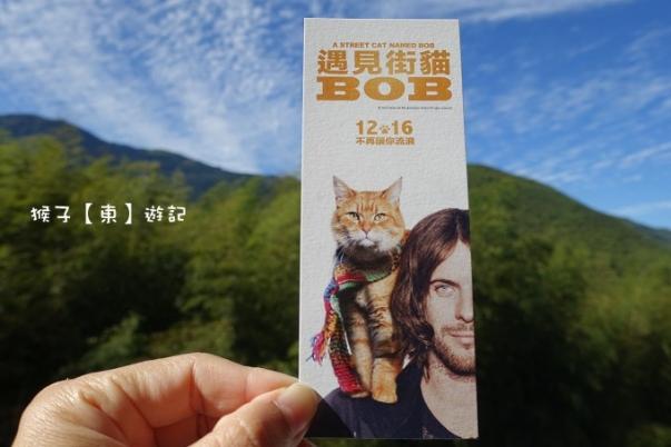 Bob 01