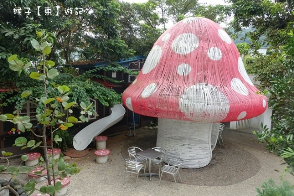mushroom001
