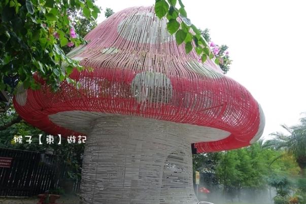 mushroom002