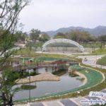[台中] 坪林森林公園 太平第一座大型多功能景觀休閒公園 又多一個遛小孩的地方啦