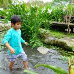 [宜蘭] 花泉有機休閒農場 diy野薑花麵條 金棗粽 抓魚抓蝦戲水好好玩