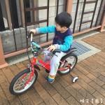 捷安特 KJ182 小童自行車 亮眼 帥氣 來去兜兜風